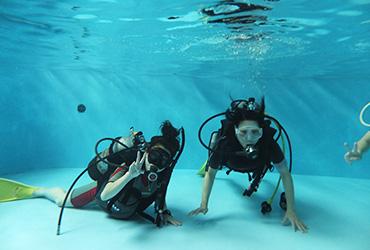point3.ダイビング専用の室内温水プール完備