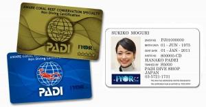 card-1